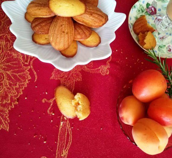 Madeleines à l'abricot